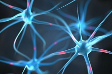 neuroplasticity-and-addiction-recovery