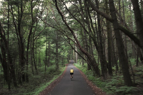 Man on bike searching for non 12 step rehab centers in the Northwest