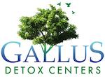 Gallus Detox Centers