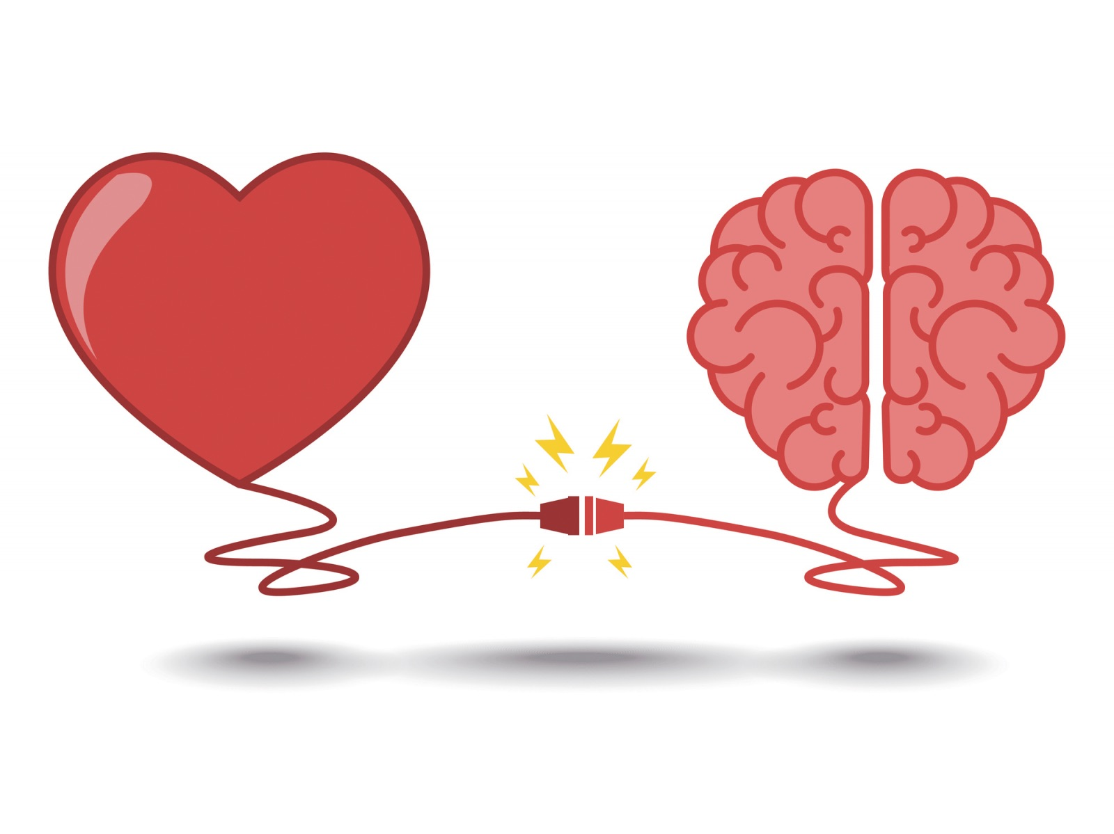 brain-and-heart-biology-of-belief