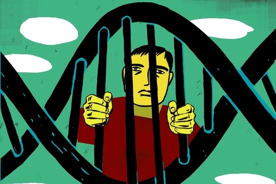 genetic-determinism-biology-of-belief