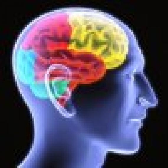 brain-trauma-addiction