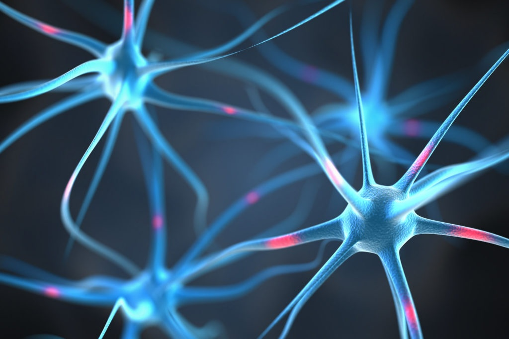 neurons-addiction-and-the-brain
