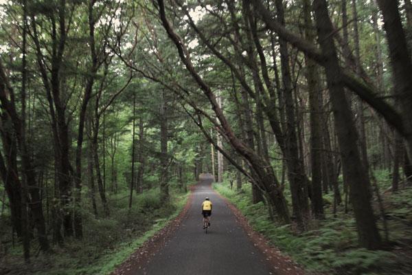 Biking in San Juan Island